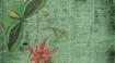 954_pixabay_butterfly-green-scrapbook